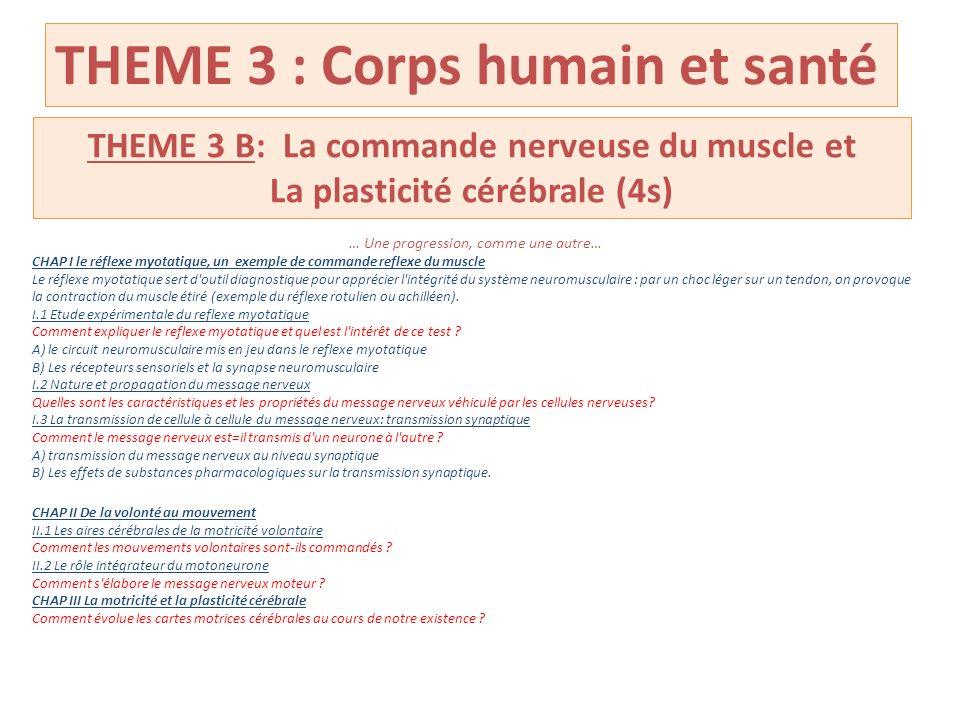 THEME 3 : Corps humain et santé