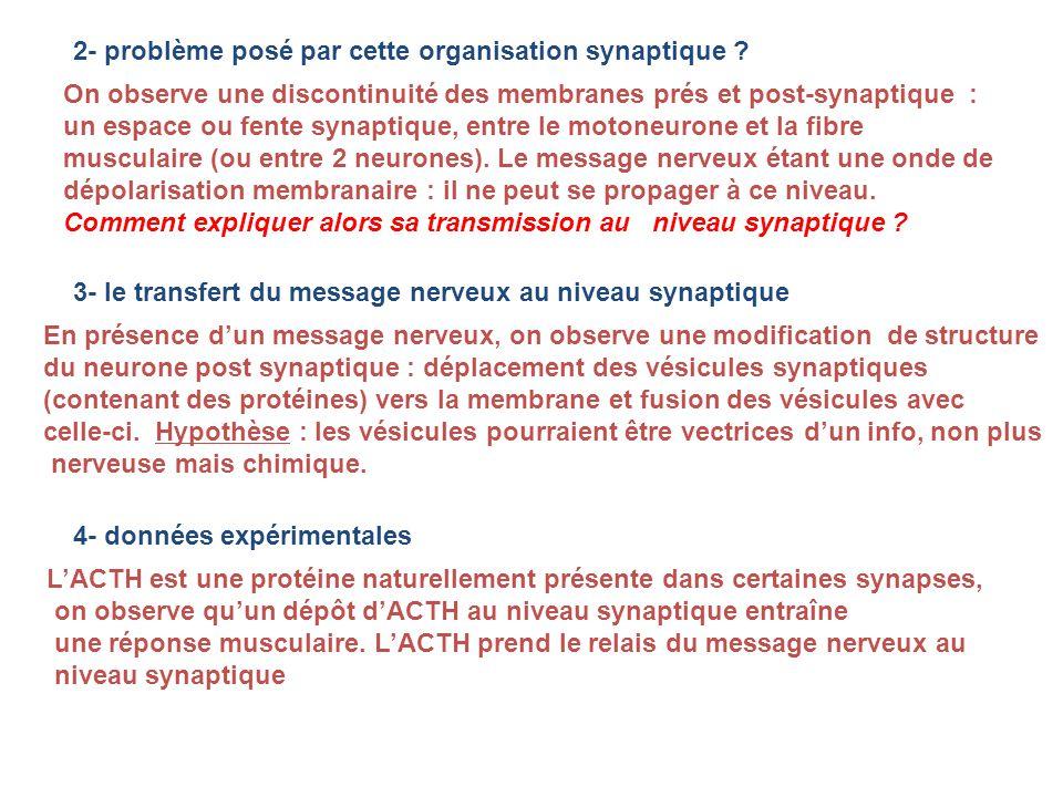 2- problème posé par cette organisation synaptique