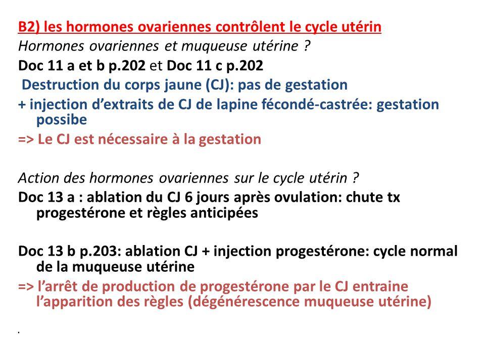 B2) les hormones ovariennes contrôlent le cycle utérin