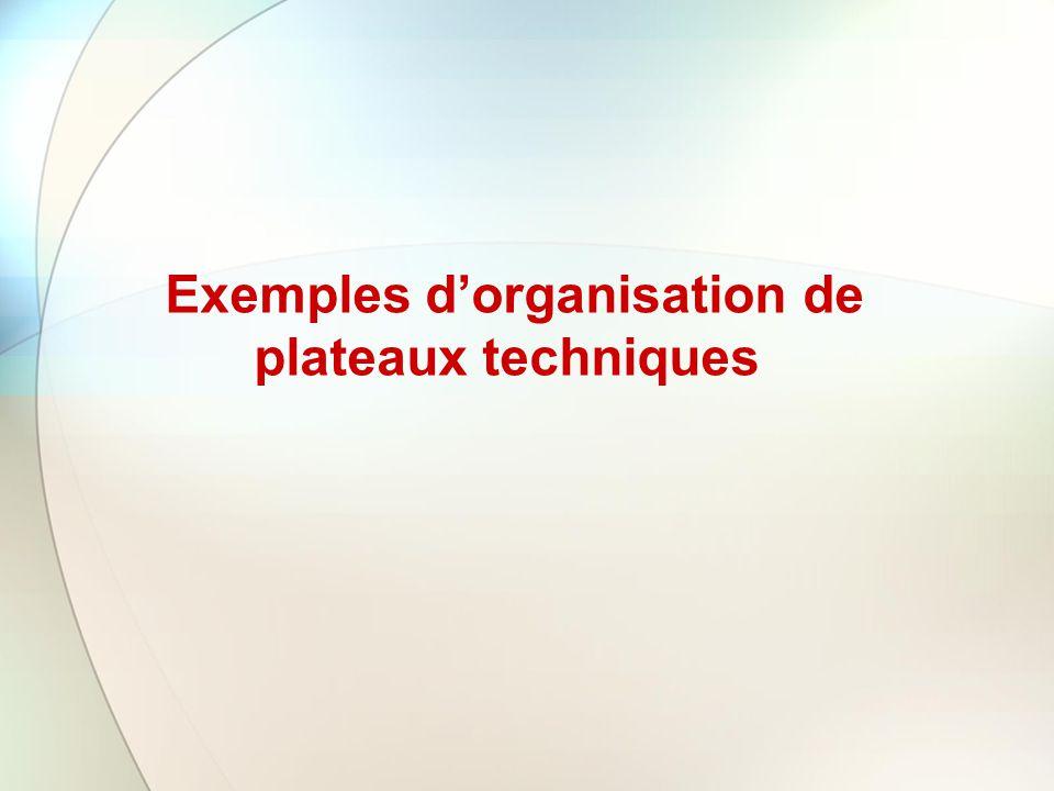 Exemples d'organisation de plateaux techniques