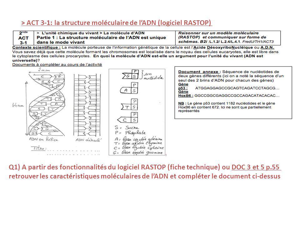 > ACT 3-1: la structure moléculaire de l'ADN (logiciel RASTOP)