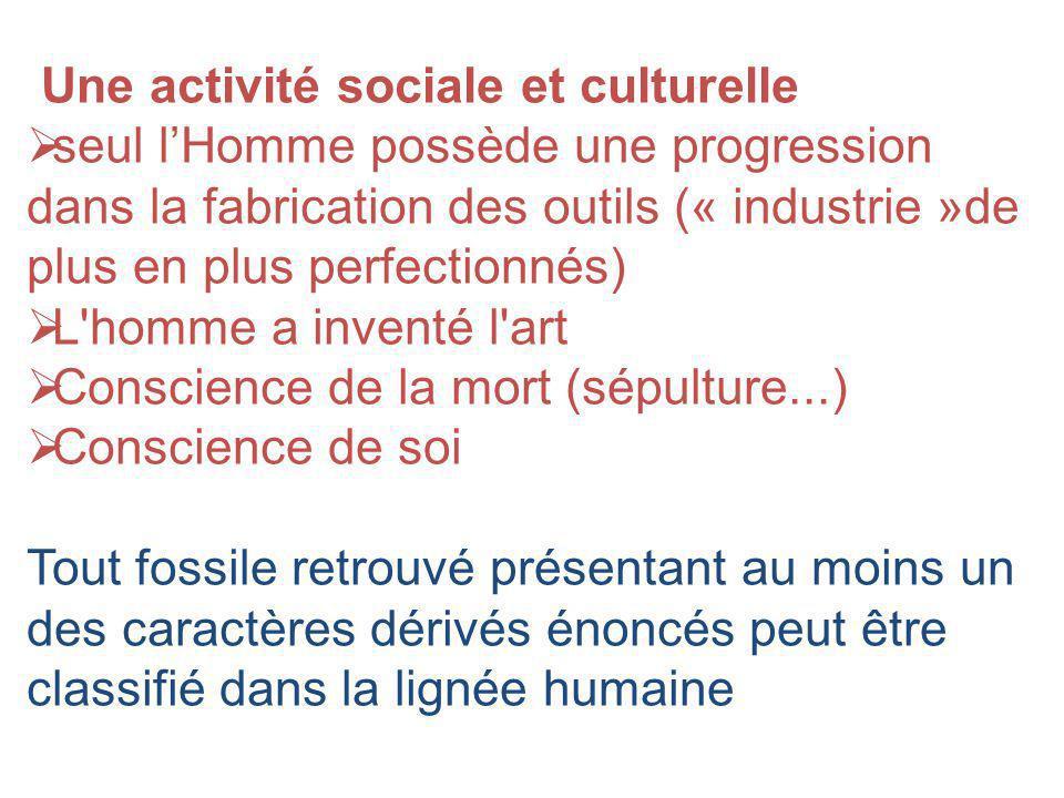 Une activité sociale et culturelle