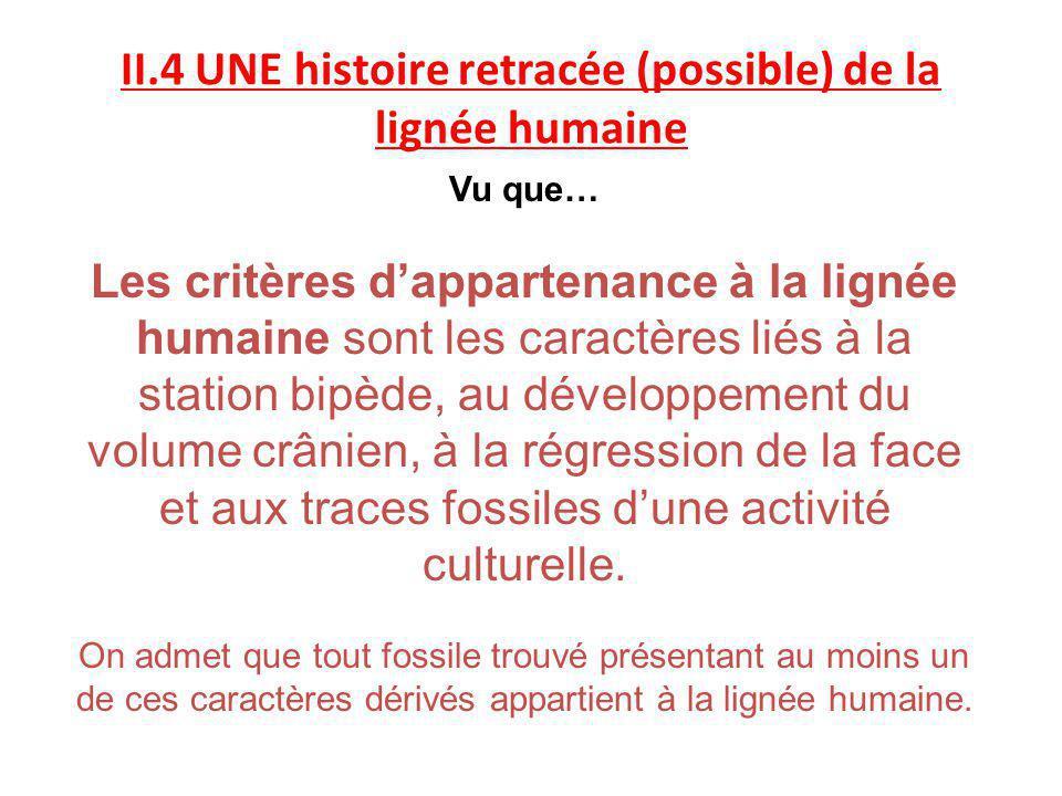 II.4 UNE histoire retracée (possible) de la lignée humaine