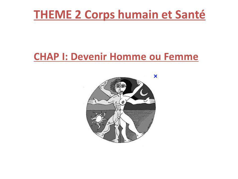 THEME 2 Corps humain et Santé
