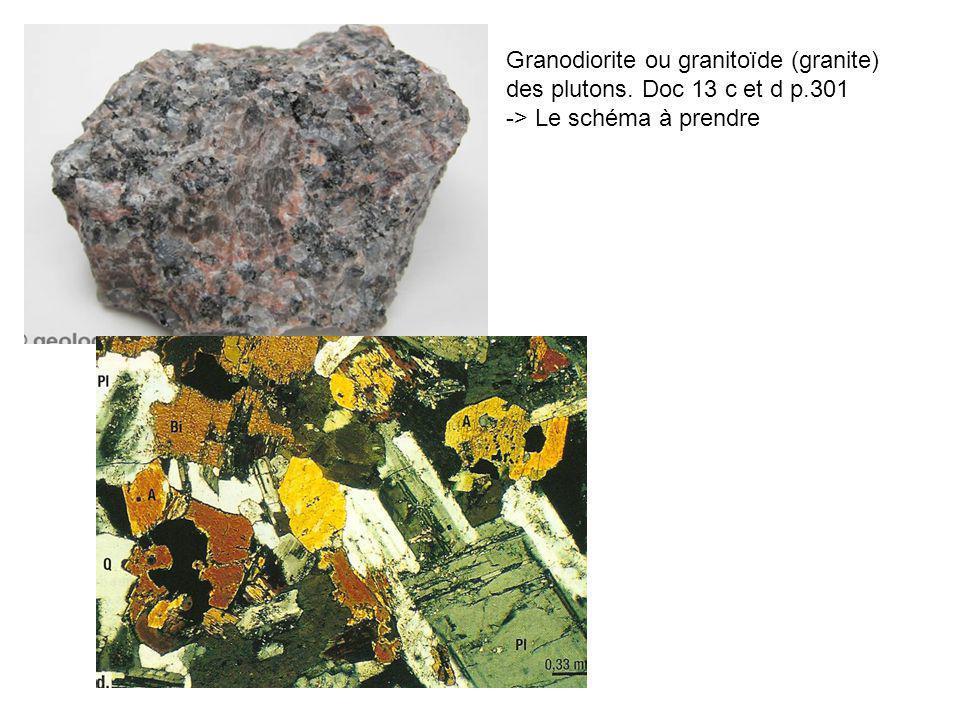 Granodiorite ou granitoïde (granite)
