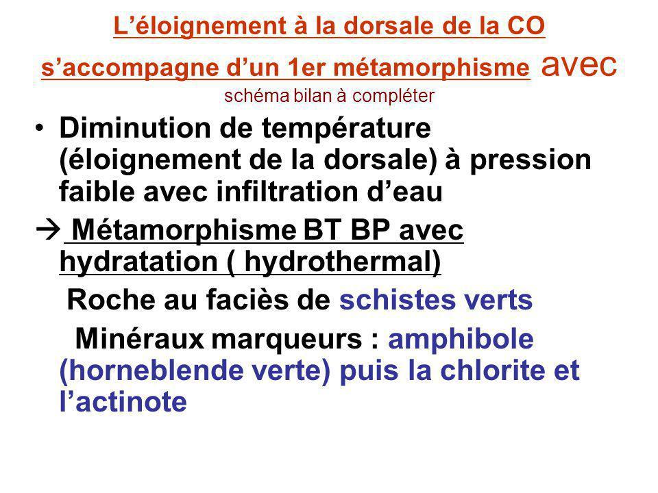 Métamorphisme BT BP avec hydratation ( hydrothermal)