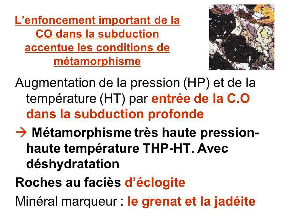 Roches au faciès d'éclogite Minéral marqueur : le grenat et la jadéite