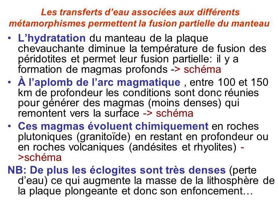 Les transferts d'eau associées aux différents métamorphismes permettent la fusion partielle du manteau