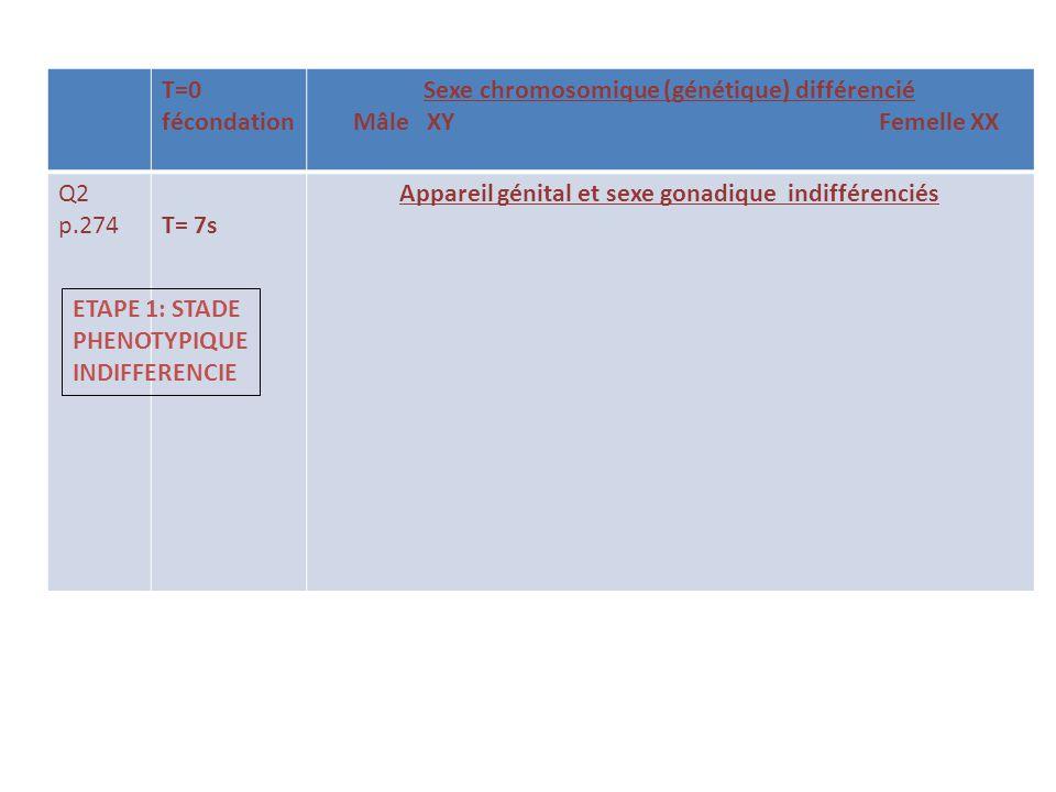 Sexe chromosomique (génétique) différencié Mâle XY Femelle XX Q2 p.274