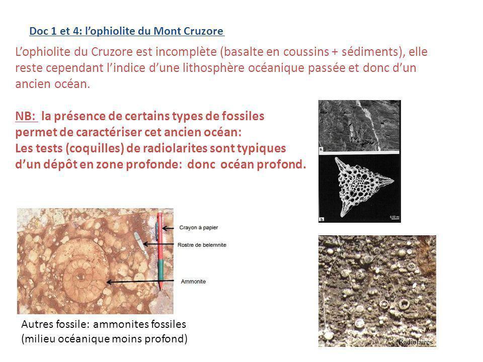 NB: la présence de certains types de fossiles