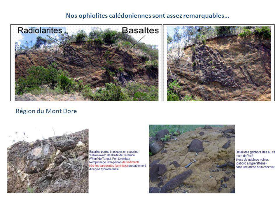 Nos ophiolites calédoniennes sont assez remarquables…