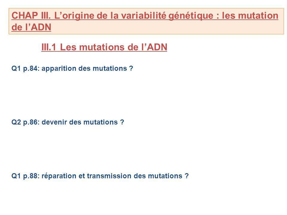 III.1 Les mutations de l'ADN