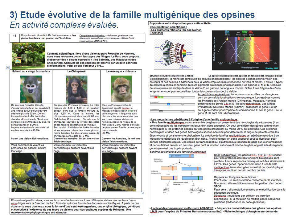 3) Etude évolutive de la famille multigénique des opsines