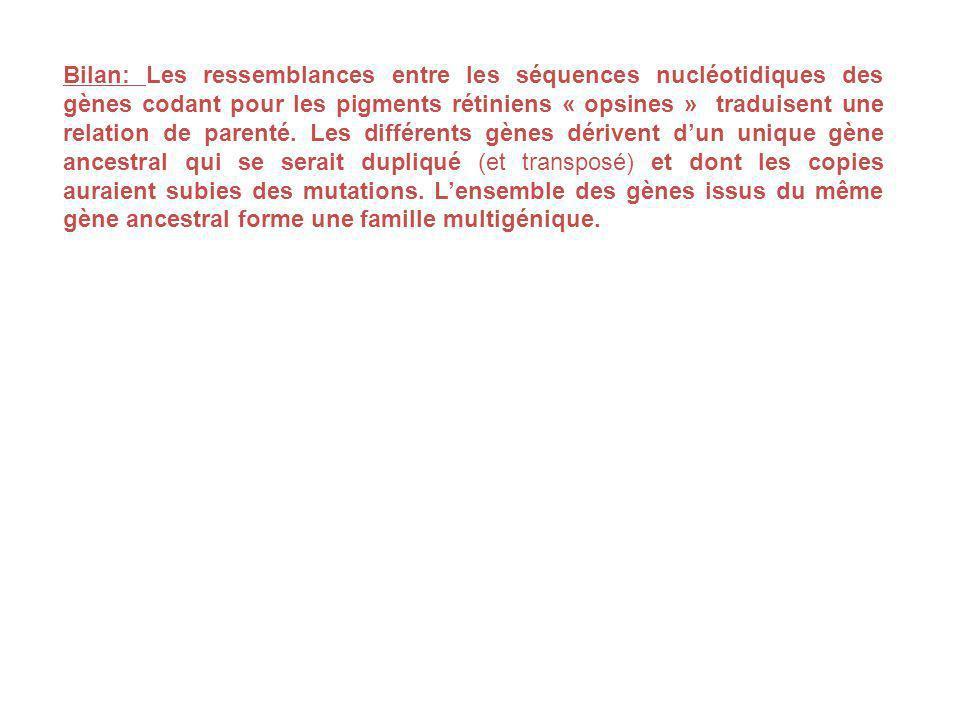 Bilan: Les ressemblances entre les séquences nucléotidiques des gènes codant pour les pigments rétiniens « opsines » traduisent une relation de parenté.