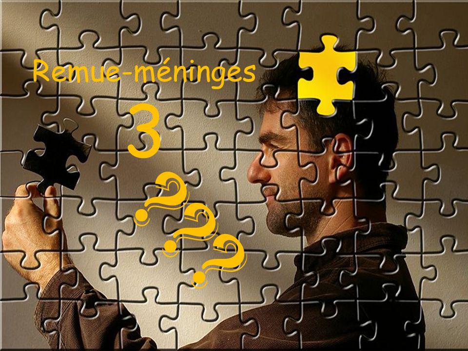 Remue-méninges 3