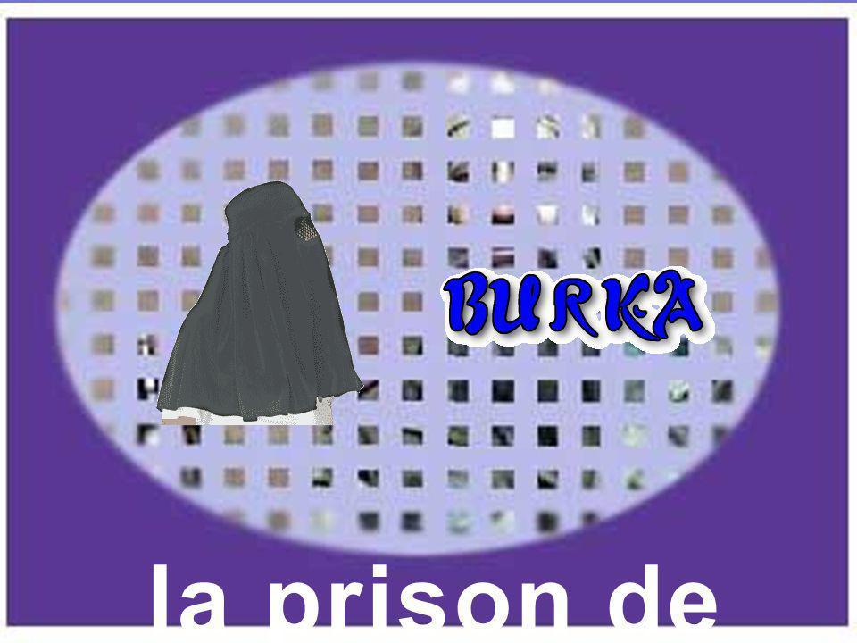 la prison de toile