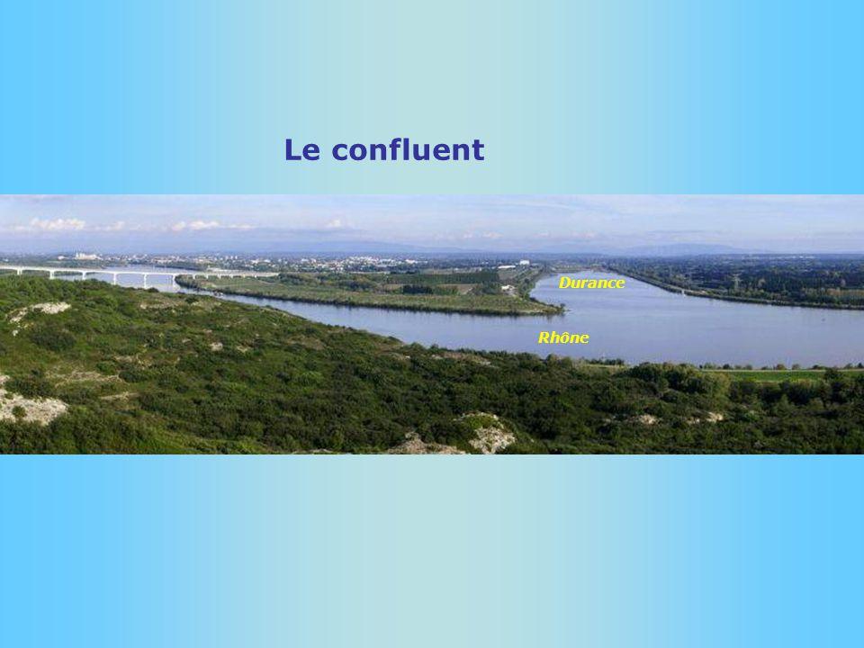 Le confluent Durance Rhône