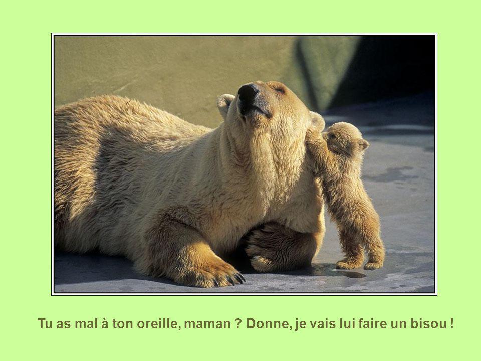 Tu as mal à ton oreille, maman Donne, je vais lui faire un bisou !