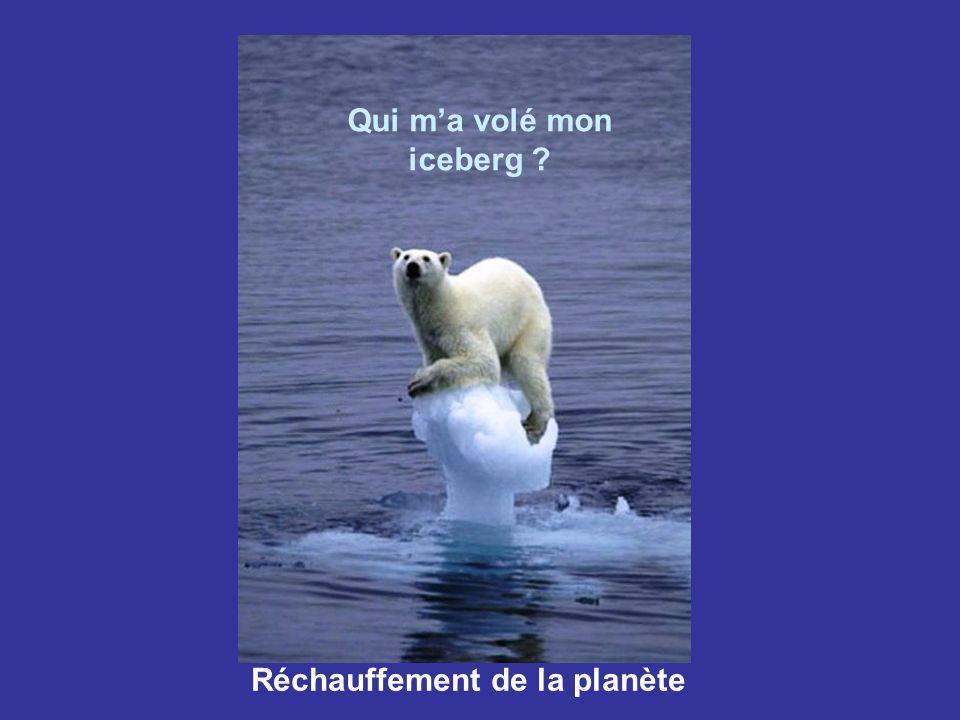 Qui m'a volé mon iceberg Réchauffement de la planète