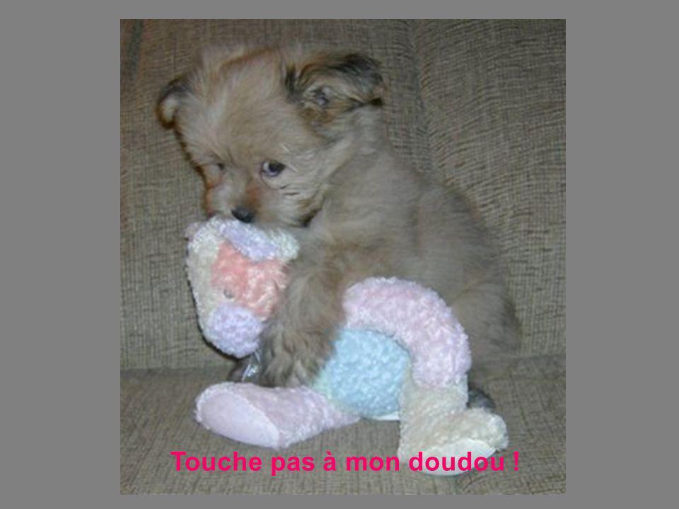 Touche pas à mon doudou !