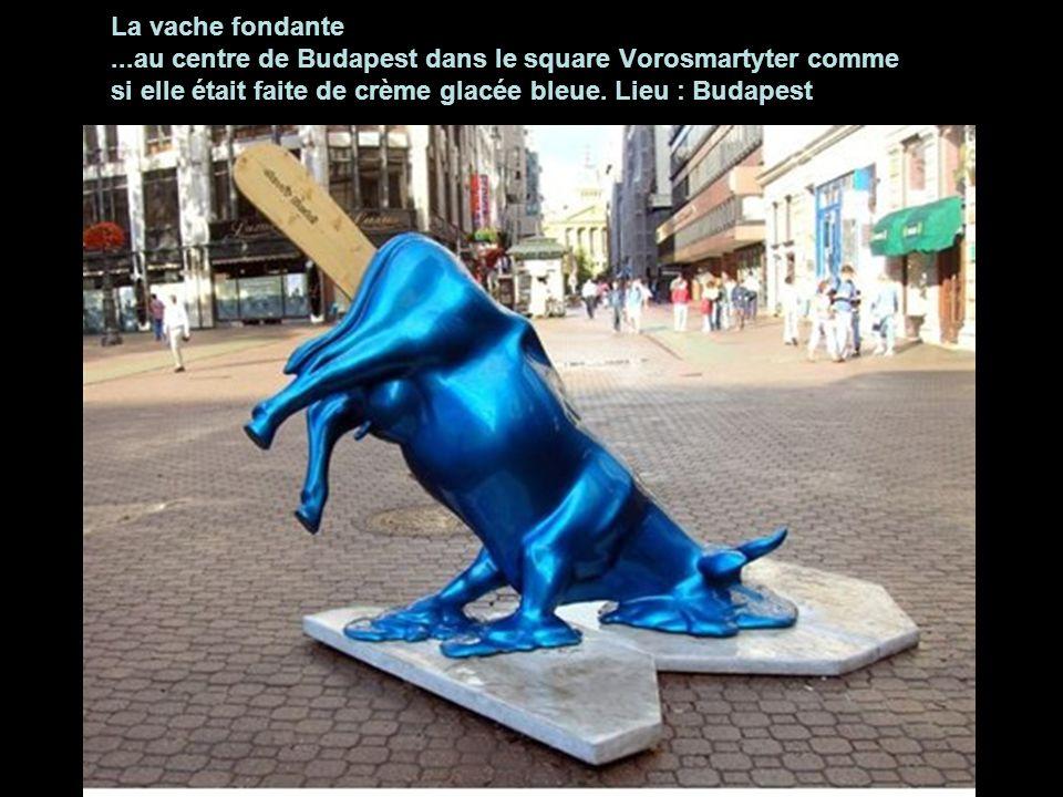 La vache fondante ...au centre de Budapest dans le square Vorosmartyter comme si elle était faite de crème glacée bleue.