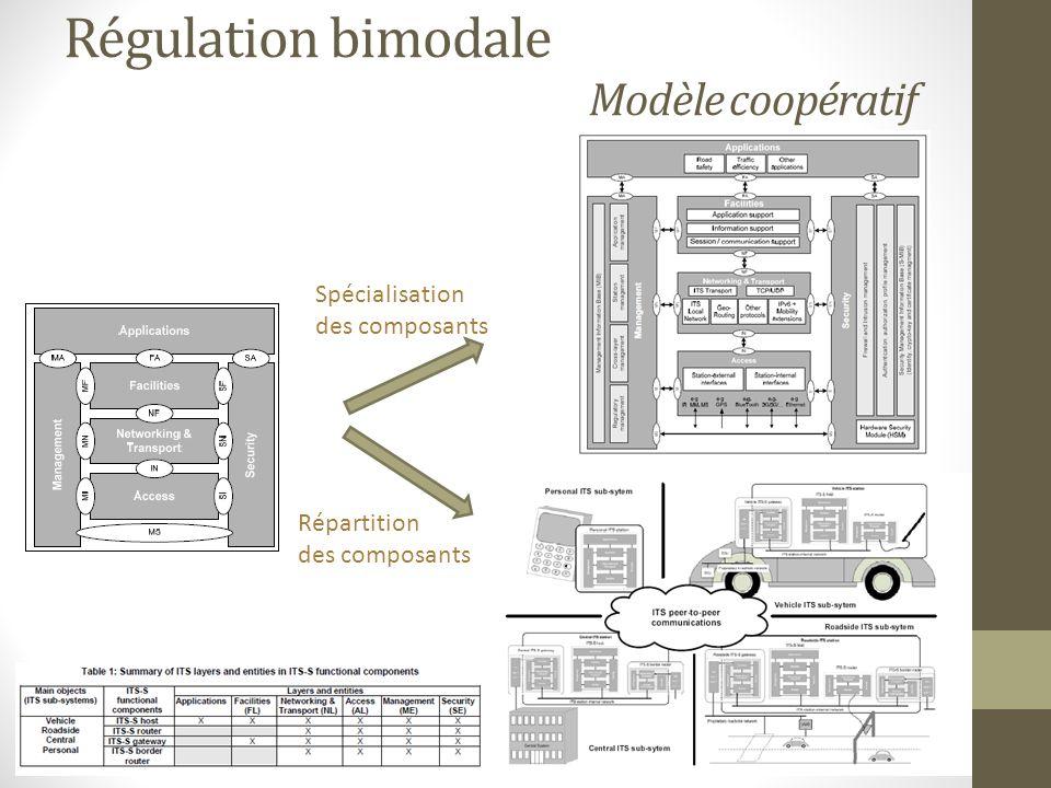 Régulation bimodale Modèle coopératif