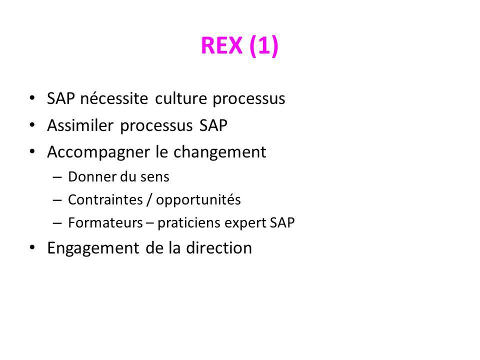 REX (1) SAP nécessite culture processus Assimiler processus SAP