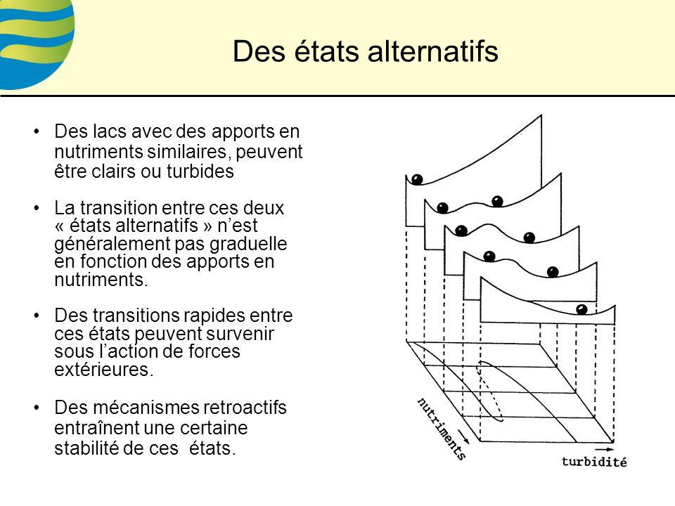 Des états alternatifs Des lacs avec des apports en nutriments similaires, peuvent être clairs ou turbides.