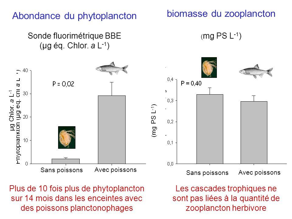 biomasse du zooplancton Abondance du phytoplancton
