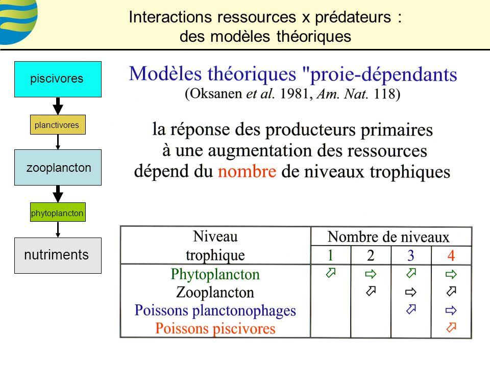 Interactions ressources x prédateurs : des modèles théoriques