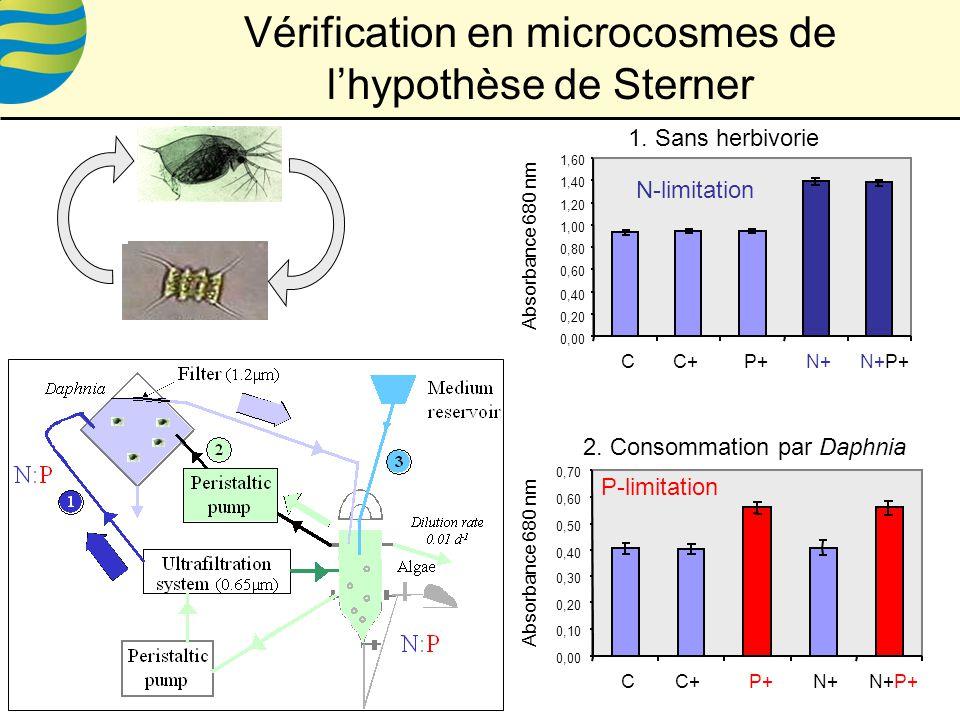 Vérification en microcosmes de l'hypothèse de Sterner