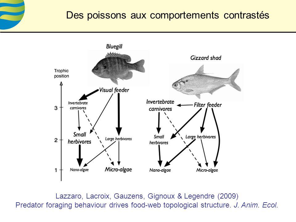 Des poissons aux comportements contrastés