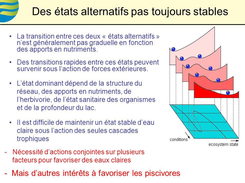 Des états alternatifs pas toujours stables