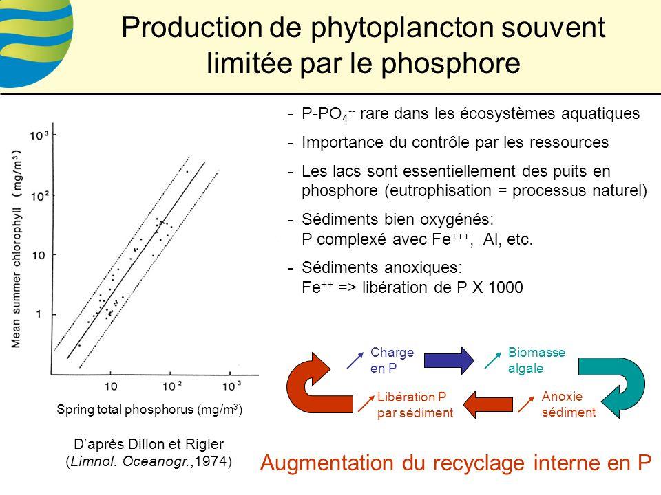 Production de phytoplancton souvent limitée par le phosphore