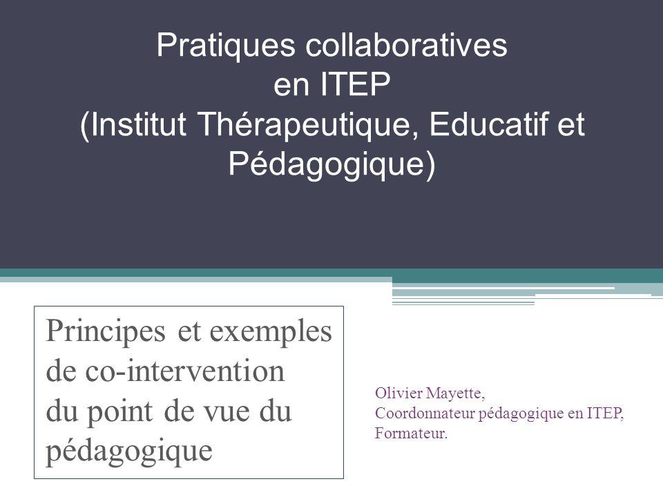 Pratiques collaboratives en ITEP (Institut Thérapeutique, Educatif et Pédagogique)