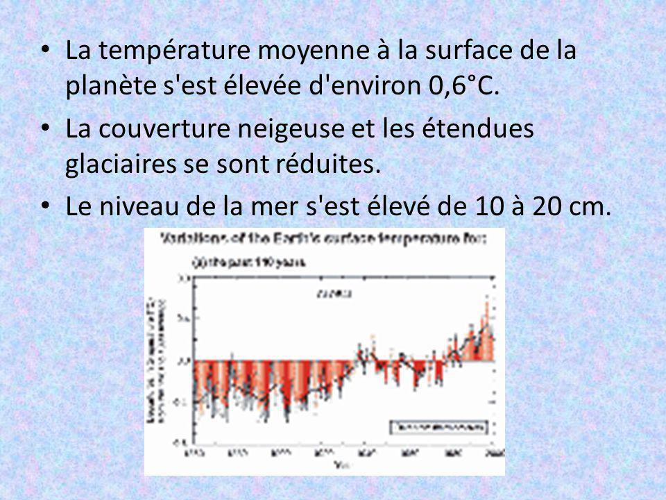 La température moyenne à la surface de la planète s est élevée d environ 0,6°C.
