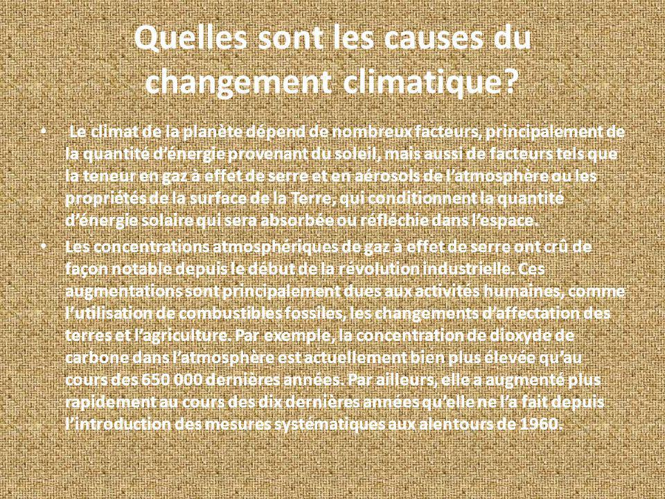 Quelles sont les causes du changement climatique
