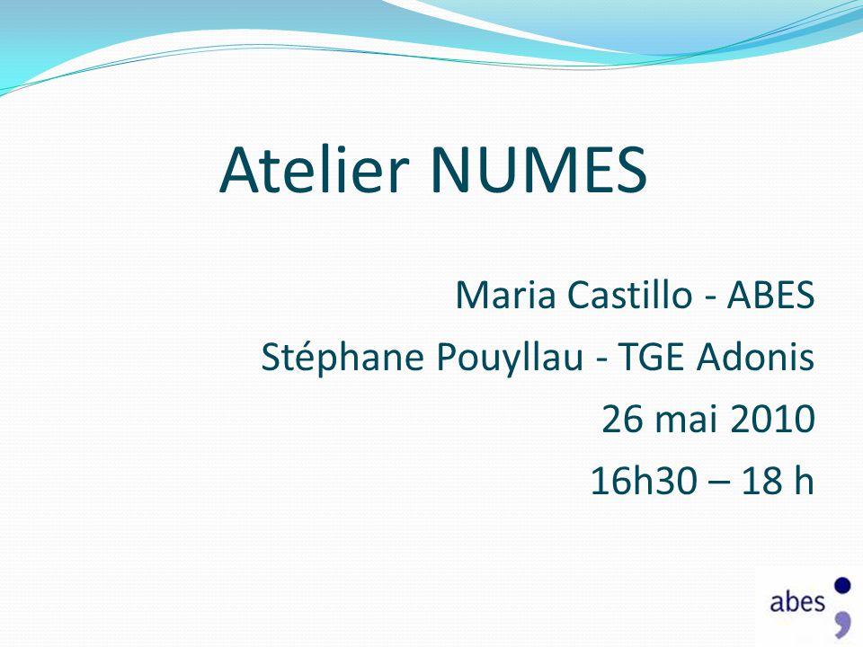 Atelier NUMES Maria Castillo - ABES Stéphane Pouyllau - TGE Adonis