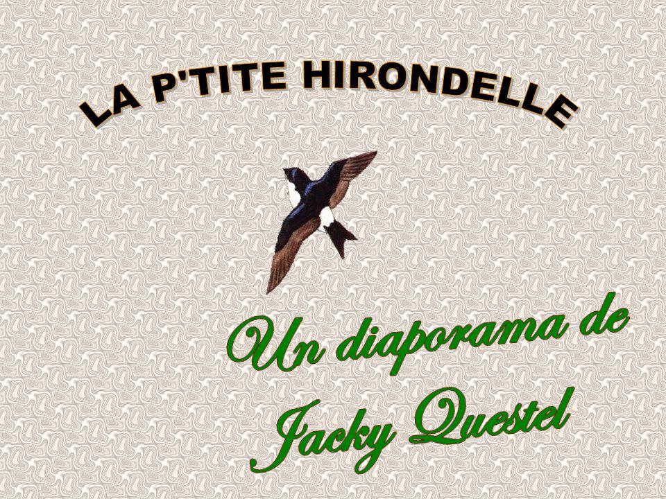 LA P TITE HIRONDELLE