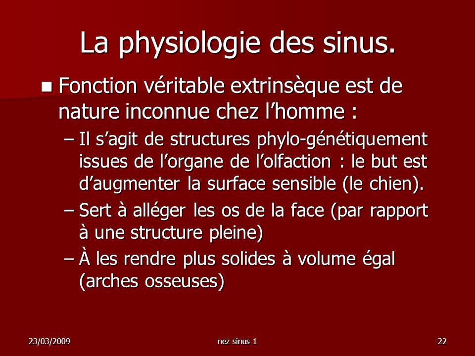 La physiologie des sinus.