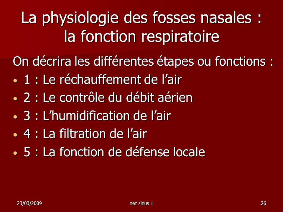 La physiologie des fosses nasales : la fonction respiratoire