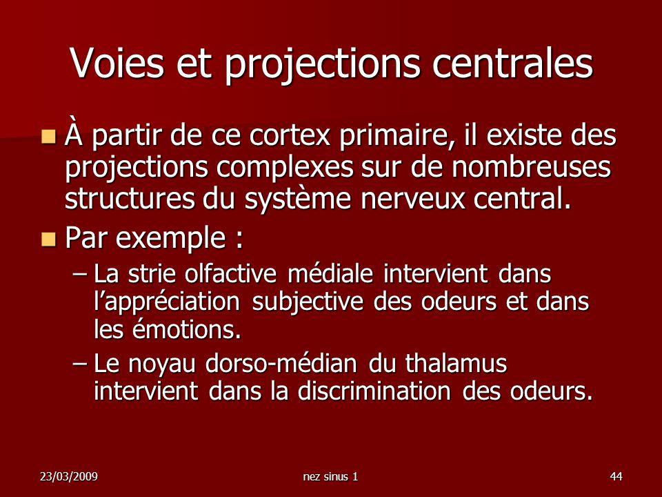 Voies et projections centrales