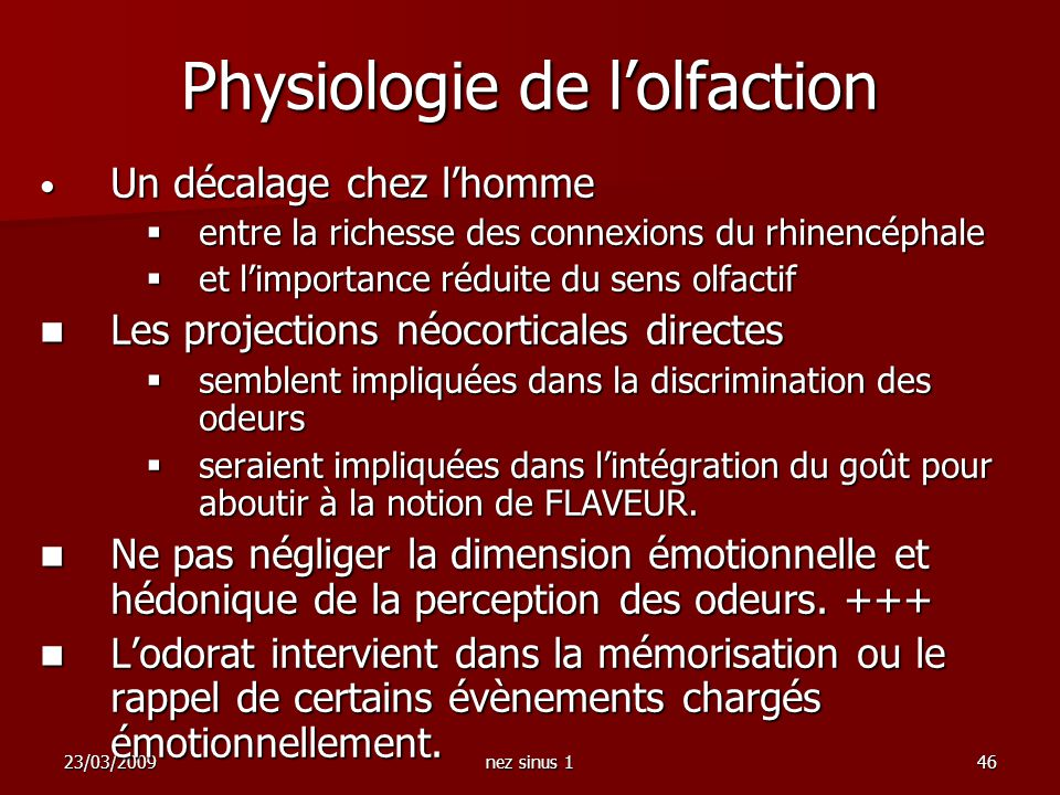 Physiologie de l'olfaction