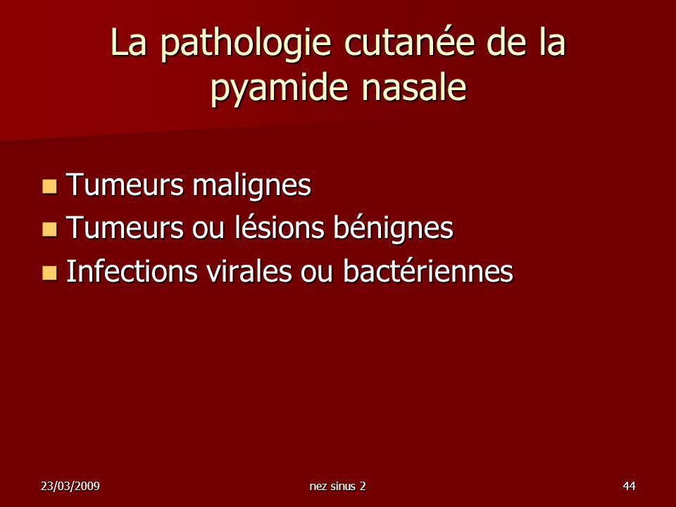 La pathologie cutanée de la pyamide nasale