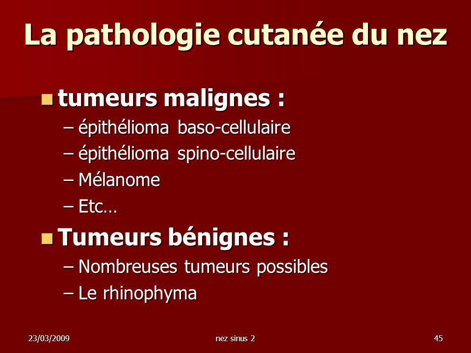 La pathologie cutanée du nez