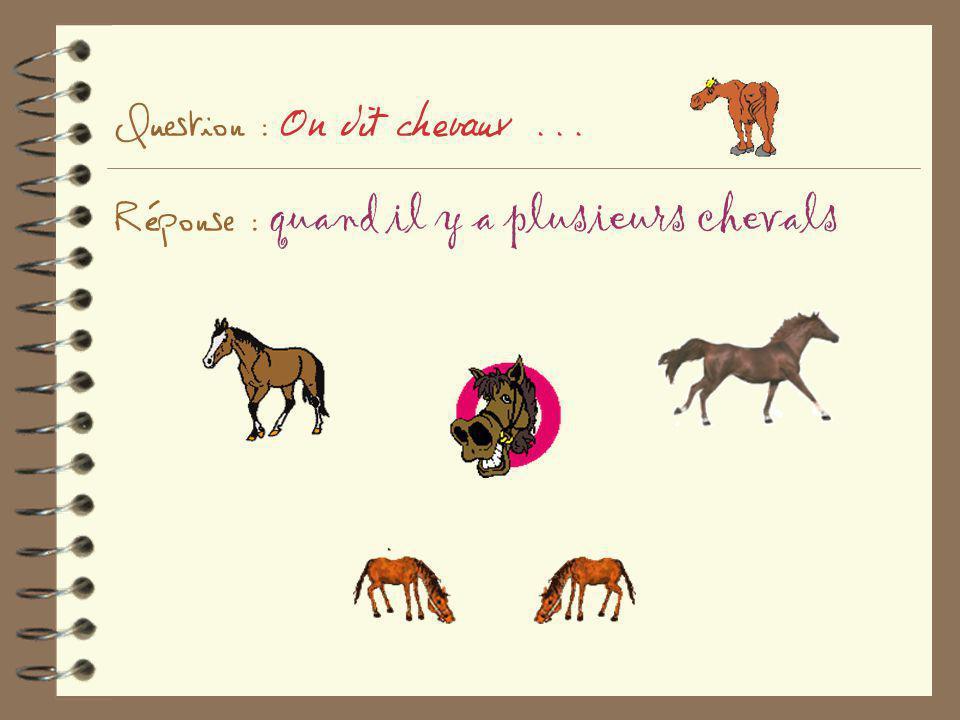 Question : On dit chevaux ... Réponse : quand il y a plusieurs chevals