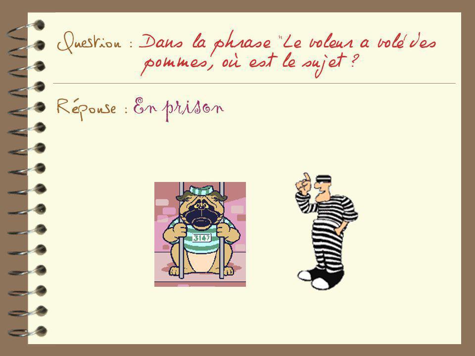Question : Dans la phrase Le voleur a volé des