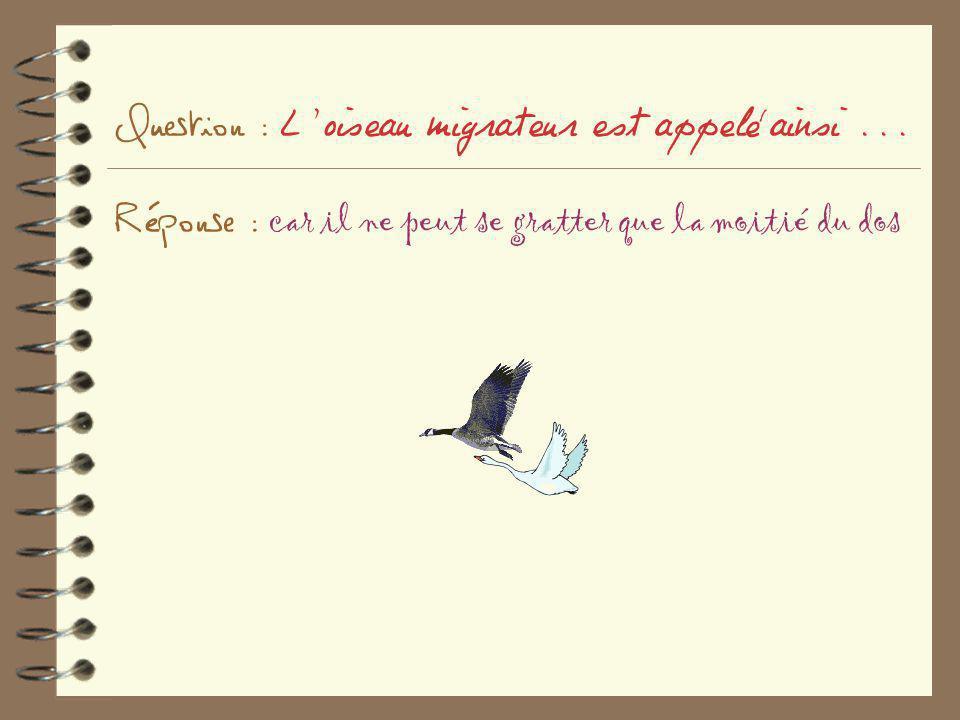 Question : L oiseau migrateur est appelé ainsi