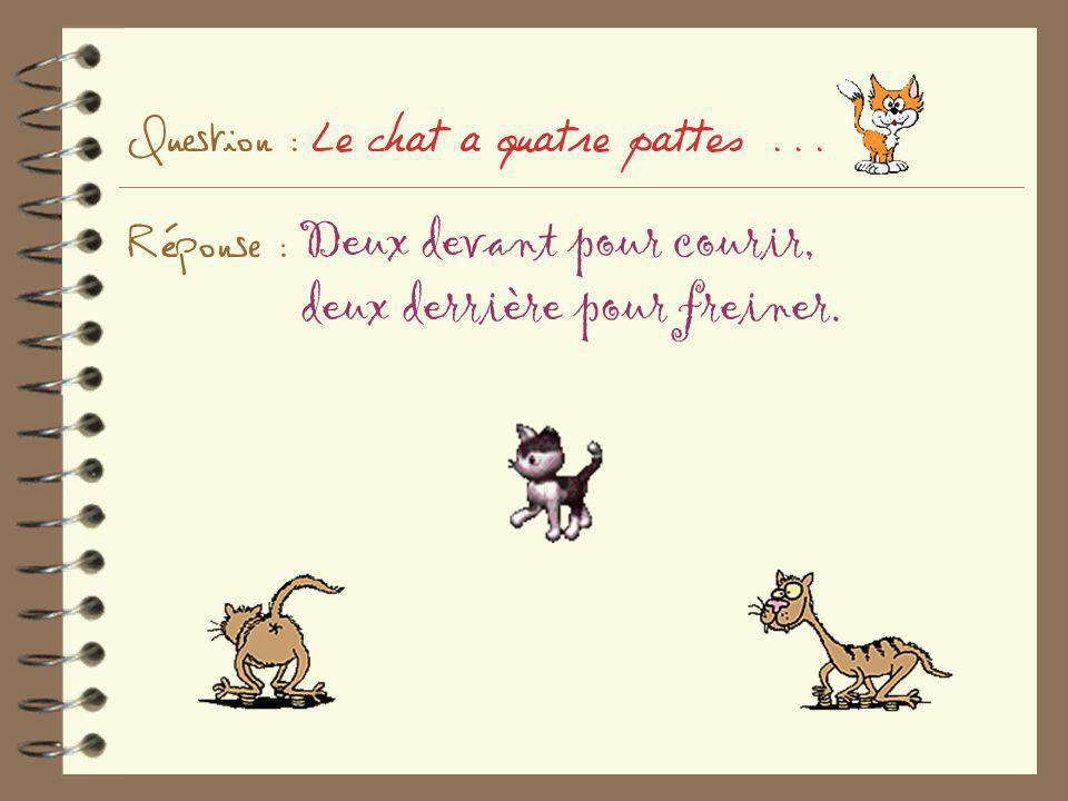 Question : Le chat a quatre pattes. Réponse : Deux devant pour courir,
