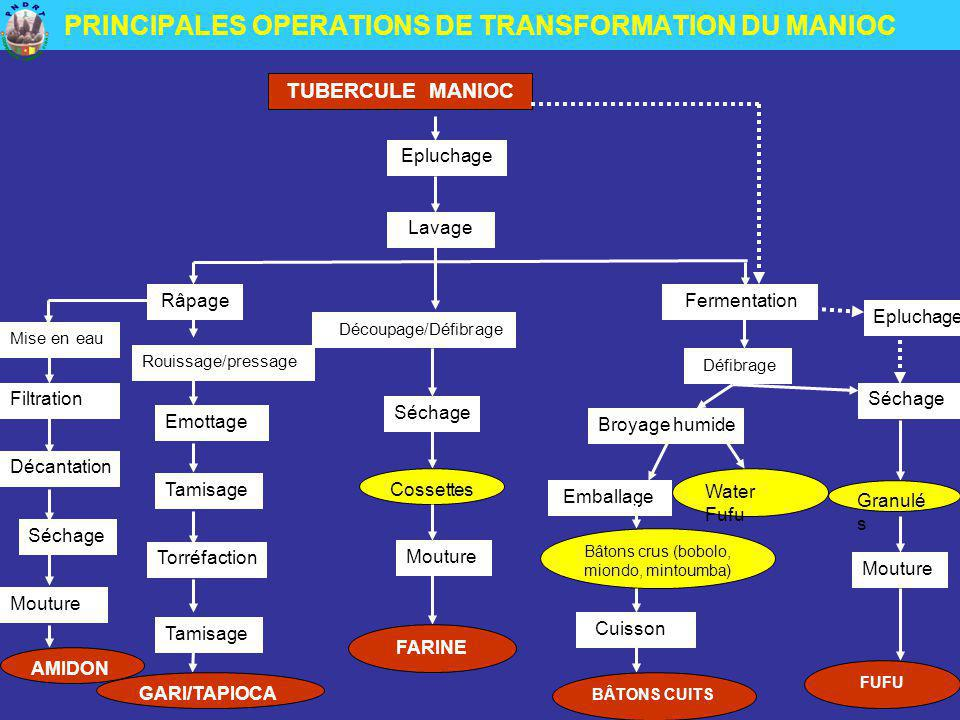 PRINCIPALES OPERATIONS DE TRANSFORMATION DU MANIOC
